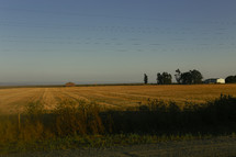 a plowed field