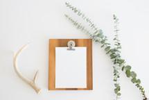 antlers, clipboard, twig, paper, blank, table, desk, naturalist