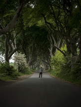 a man standing on a road under twisting tree branches