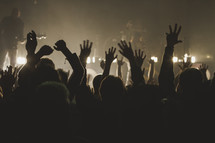 cheering fans in an audience at a concert