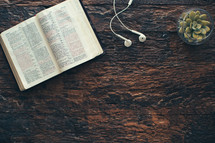 open Bible, earbuds, and plant on a wood background