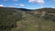 grassland and forest in Colorado