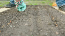 planting seeds in a garden
