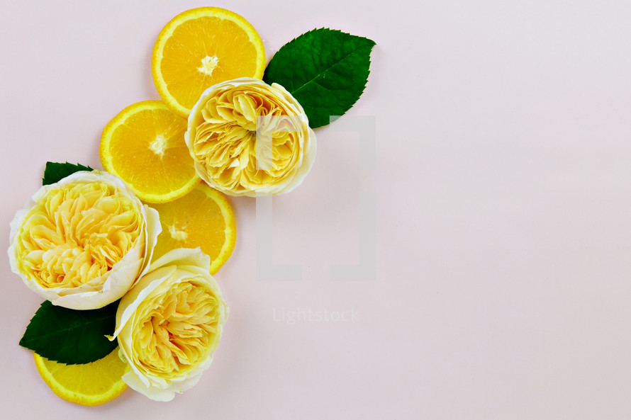 yellow roses and lemons on white background