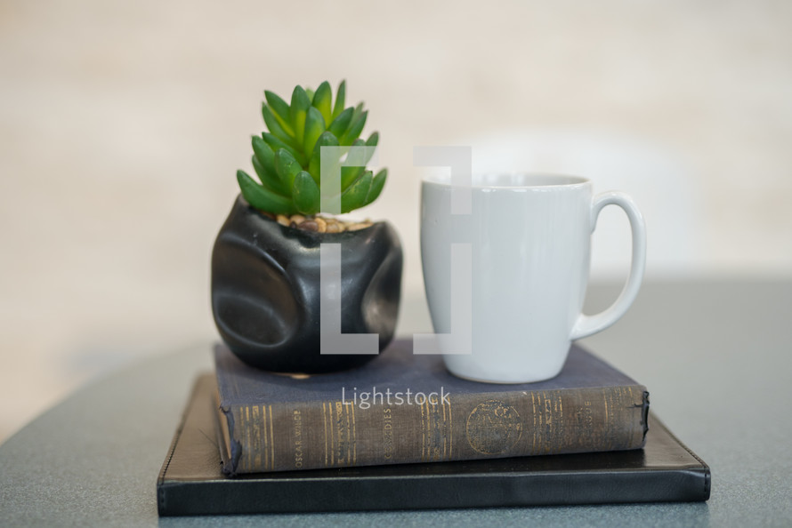 coffee mug, houseplant and a stack of books