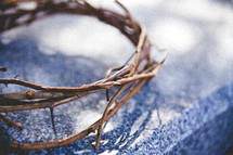 crown of thorns outdoors
