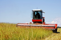 Harvesting a grass field for agricultural use in feeding livestock.