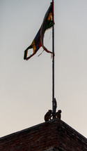 monkey in India by a flagpole