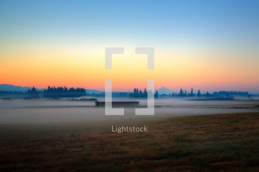 Foggy sunrise over a brush praire