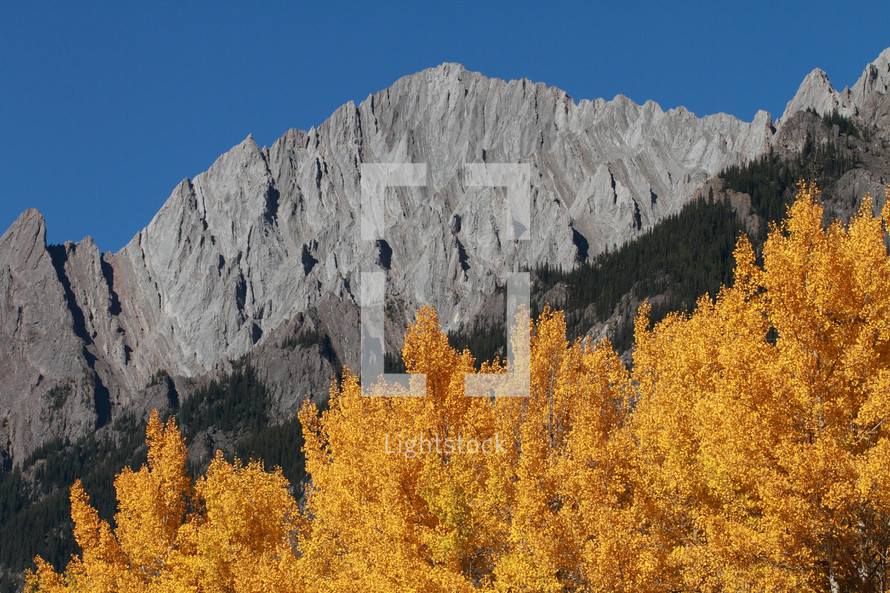 Trees and mountains in Autumn