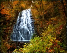 Waterfall in the autumn leaves.