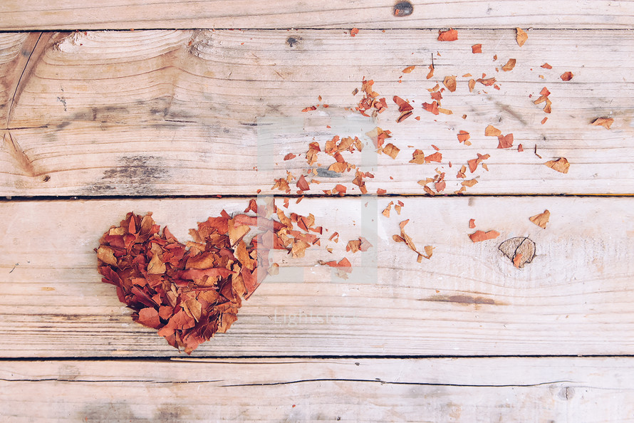 heart shape from fall leaves