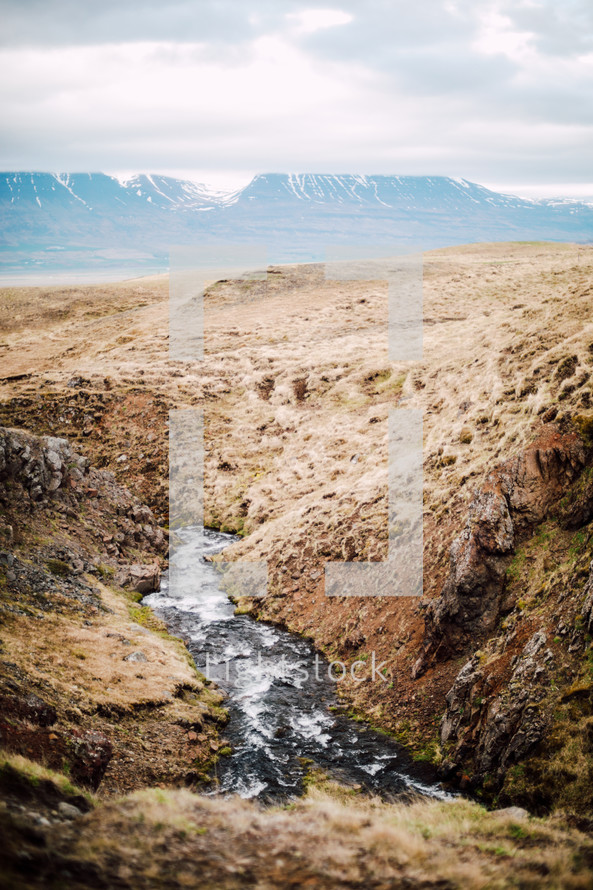 flowing stream in Iceland