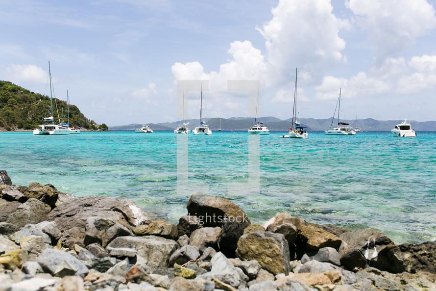 catamarans in a bay