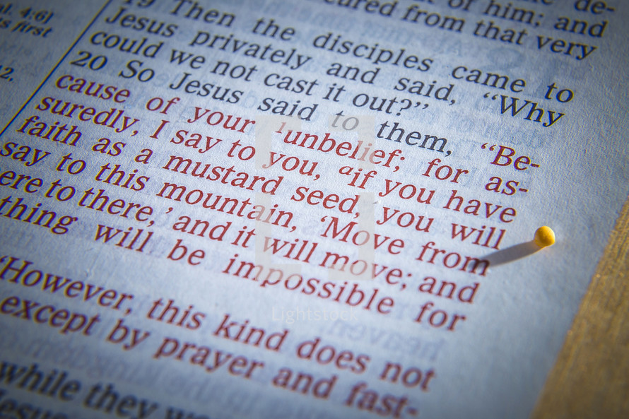 mustard seed parable text on the pages of a Bible