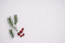 red berries and pine needles in snow