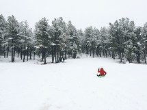 sledding in the winter snow