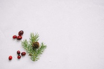 red berries, and pine needles and pine cone in snow