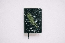 spruce twig on a Bible in the snow