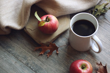 apples, blanket, and fall leaves