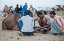 men helping a sick camel in India