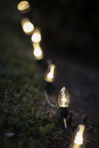 Christmas lights in the grass