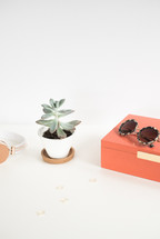 headphones, paper clips, sunglasses, succulent plant, potted plant, box, desk