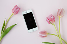pink tulips on a light pink background with cellphone