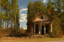 abandoned house in front of tall pines