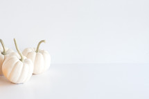 white pumpkins on a white background