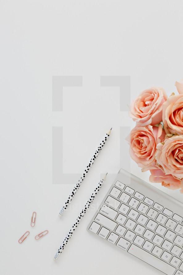paperclips, computer keyboard, pencils, and peach roses on a desk