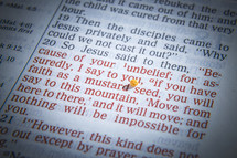 Mustard Seed parable text in Bible
