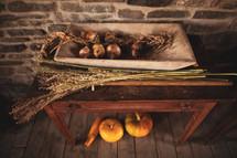 pumpkin under a table in a farm house
