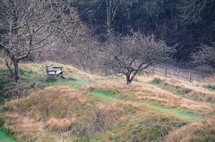 empty park bench on a countryside hill