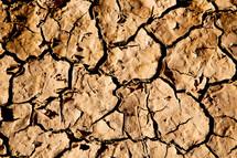 parched soil