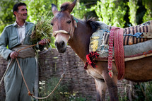 Kurdish villager, Muslim, with work pony