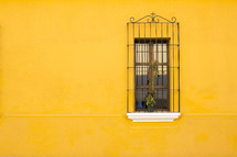 bars on a window and a yellow wall