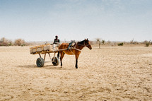 A black man sits in a horse drawn wagon in Africa