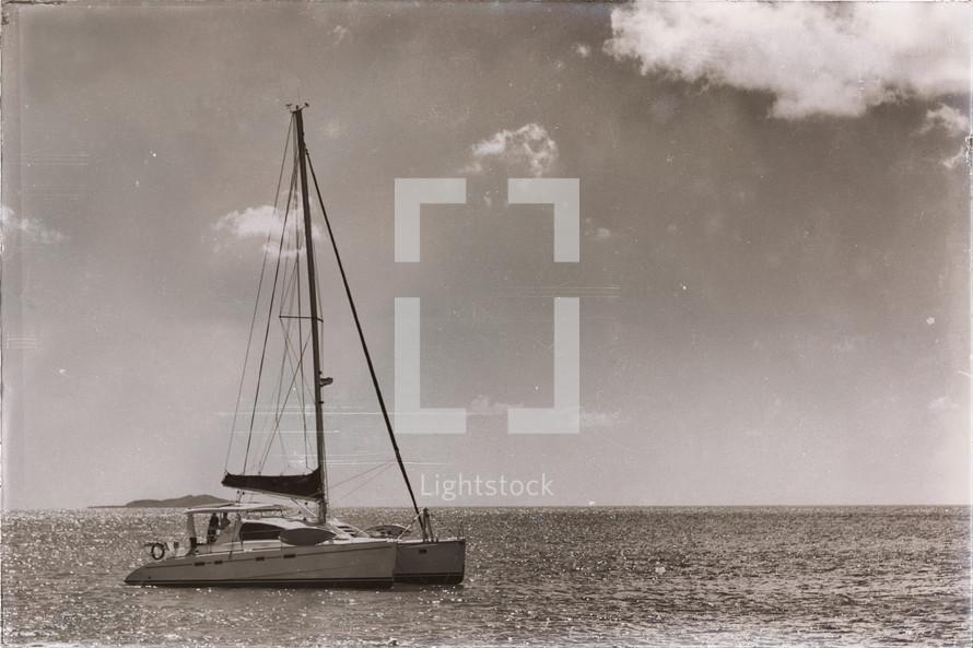sailing on a catamaran