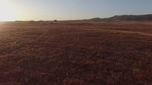 aerial view over a brown field at sunset