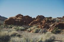 red rocks and desert plants
