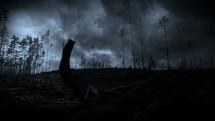 lightning strike in a forest