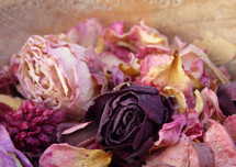 dried roses potpourri