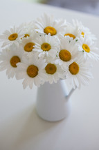 white daisies in a vase