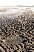 ripples in wet sand on a beach