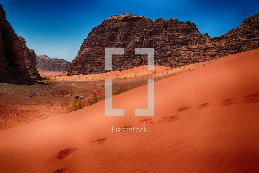 tracks in desert sand