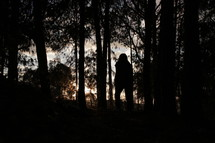 silhouette walking through a forest