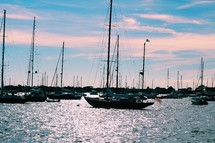 boats in a crowded bay
