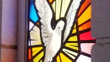 Rack focus of stained glass image of dove