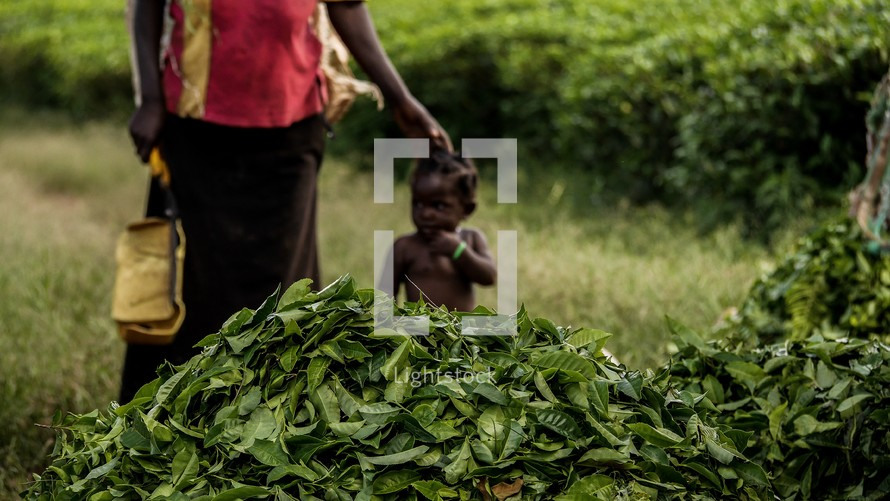 mother and child near crops in Uganda